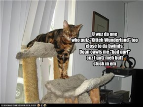 "U wuz da one  who putz ""Kitteh Wunderland"" too close to da bwinds. Doan cawls me ""bad gurl""  cuz I gotz meh butt  stuck in em"