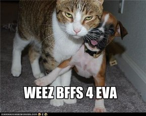 WEEZ BFFS 4 EVA