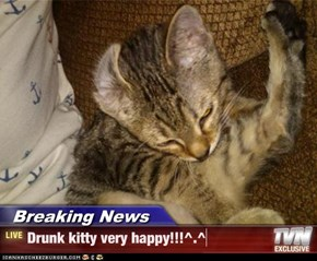 Breaking News - Drunk kitty very happy!!!^.^