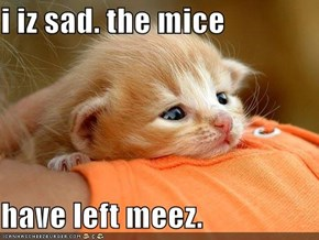 i iz sad. the mice  have left meez.