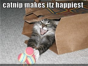 catnip makes itz happiest