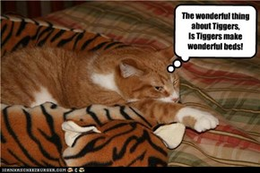 The wonderful thing about Tiggers, Is Tiggers make wonderful beds!