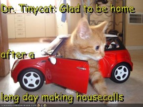 Dr. Tinycat: Glad to be home after a                       long day making housecalls