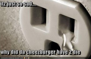 itz just so sad....  why did da cheezburger have 2 die