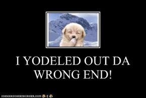 I YODELED OUT DA WRONG END!