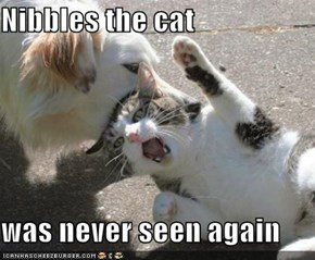 Nibbles the cat  was never seen again
