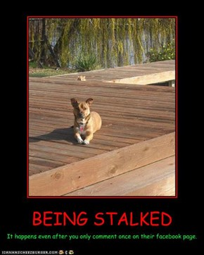 BEING STALKED