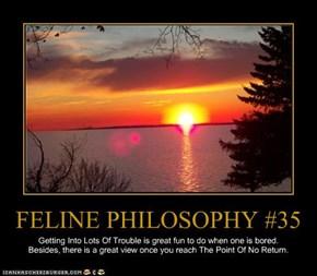 FELINE PHILOSOPHY #35