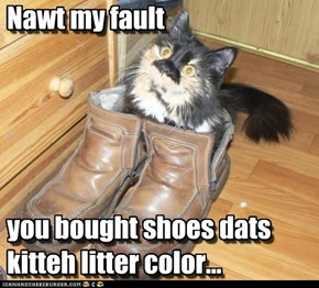 Nawt my fault       you bought shoes dats kitteh litter color...