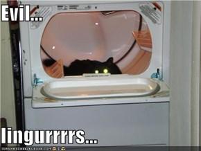 Evil...  lingurrrrs...