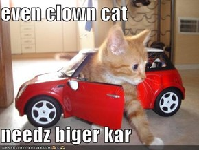 even clown cat   needz biger kar