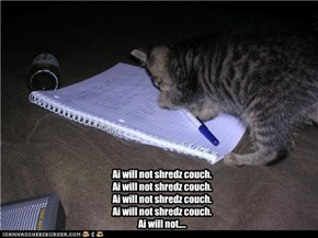 Bad kitteh....
