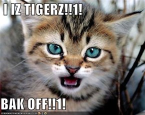 I IZ TIGERZ!!1!  BAK OFF!!1!