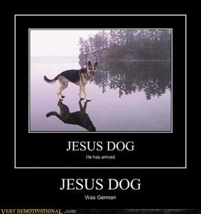 JESUS DOG