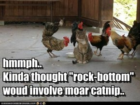 "hmmph..  Kinda thought ""rock-bottom"" woud involve moar catnip.."