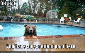 OH  HAI  You have an excellent pool here
