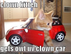 clown kitteh  gets owt uv clown car