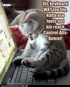 I kin has kitteh-size komputer, plz?