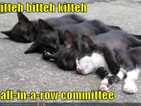 itteh bitteh kitteh  all-in-a-row committee