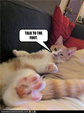 TALK TO THE FOOT.