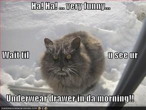 Ha! Ha! ... very funny... Wait til                                              u see ur  Underwear drawer in da morning!!