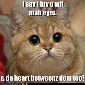 ~ I say I luv u wif mah eyez, & da heart betweenz dem too! ~