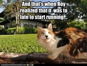 And that's when Roy realized that it  was to late to start running....