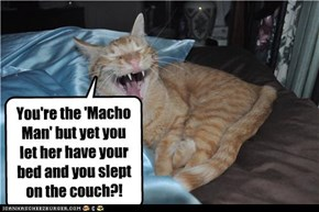 You're the 'Macho Man' but yet you let her have your bed and you slept on the couch?! lolololol
