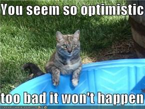 You seem so optimistic  too bad it won't happen