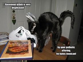 Basement kitteh is very displeased