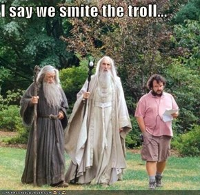 I say we smite the troll...