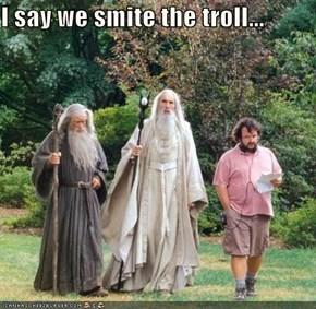 I say we smite the troll...