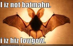 I iz not batmahn.  i iz hiz lowgow.
