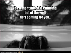 basement kitteh is climbing out of the well. he's coming for you...