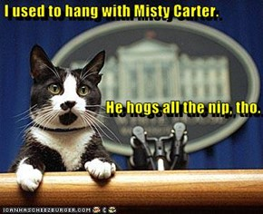 I used to hang with Misty Carter.                                   He hogs all the nip, tho.
