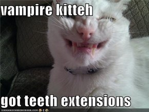 vampire kitteh  got teeth extensions