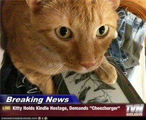 "Breaking News - Kitty Holds Kindle Hostage, Demands ""Cheezburger"""