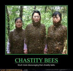 CHASTITY BEES