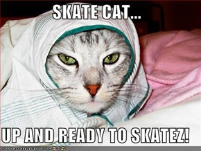 SKATE CAT...  UP AND READY TO SKATEZ!