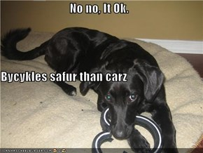 No no, It Ok. Bycykles safur than carz