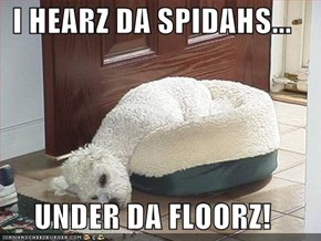 I HEARZ DA SPIDAHS...  UNDER DA FLOORZ!