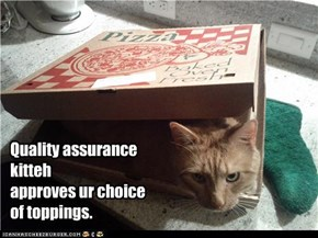 Quality assurance  kitteh approves ur choice  of toppings.
