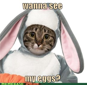 sketchy bunny: wanna see my eggs?