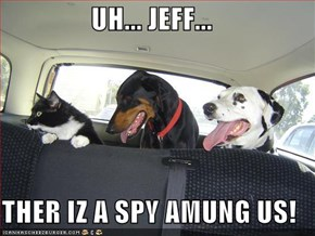 UH... JEFF...  THER IZ A SPY AMUNG US!
