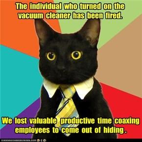 Business Cat: VROOOM