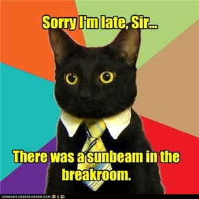 Business Cat: I Was Guarding It
