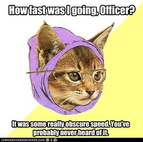 Hipster Kitty gets pulled over