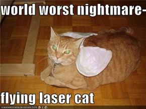 world worst nightmare-  flying laser cat