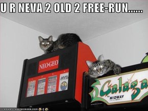 U R NEVA 2 OLD 2 FREE-RUN......