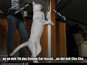 Ceiling Cat Luvd to Dance